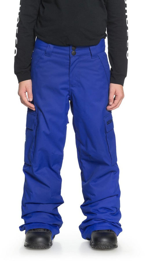 DC Banshee Youth Kids' Ski/Snowboard Pants, L Surf The Web